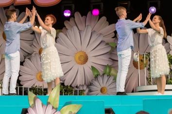 Schottis dans
